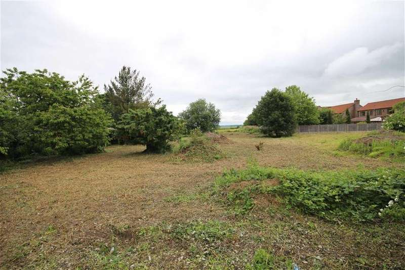 5 Bedrooms Land Commercial for sale in High Street, Walcott, Lincoln, Lincolnshire