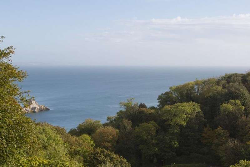 2 Bedrooms Apartment Flat for sale in Sachs Lodge Asheldon Road, Torquay, TQ1