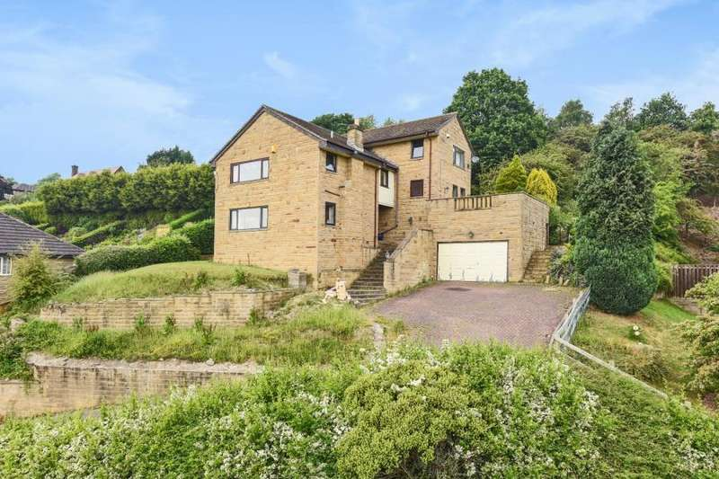 4 Bedrooms Detached House for sale in HIGH MEADOWS, LOW ROAD, THORNHILL, WF12 0PH