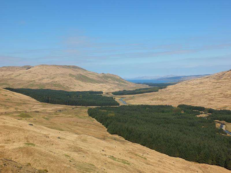 Land Commercial for sale in The Glen Forsa Woodlands, Near Salen, Isle of Mull PA72