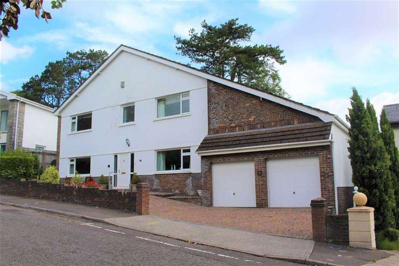 4 Bedrooms Detached House for sale in Palmyra Court, West Cross