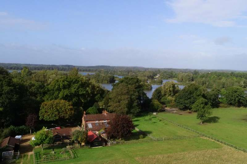 4 Bedrooms Detached House for sale in Moyles Court, New Forest, BH24 3NF