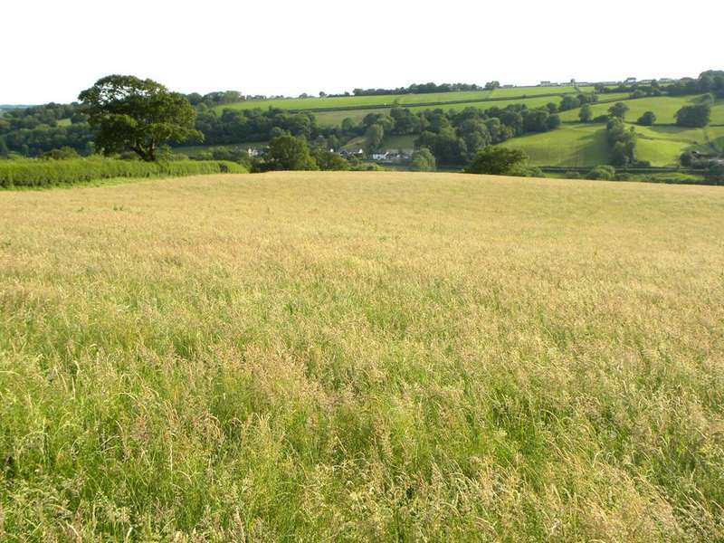 Land Commercial for sale in 64 Acres Part of Faerdre Fach, Llandysul
