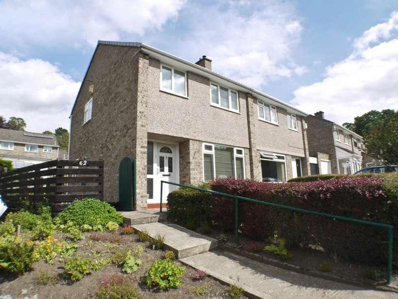 3 Bedrooms Semi Detached House for sale in Birkdene, Stocksfield, NE43