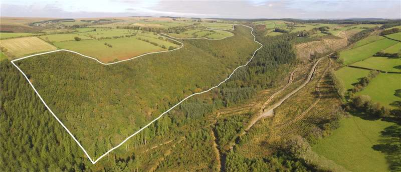 Land Commercial for sale in Woodland At Blaen-Hauliw, Pencader, Carmarthenshire, SA39 9BA