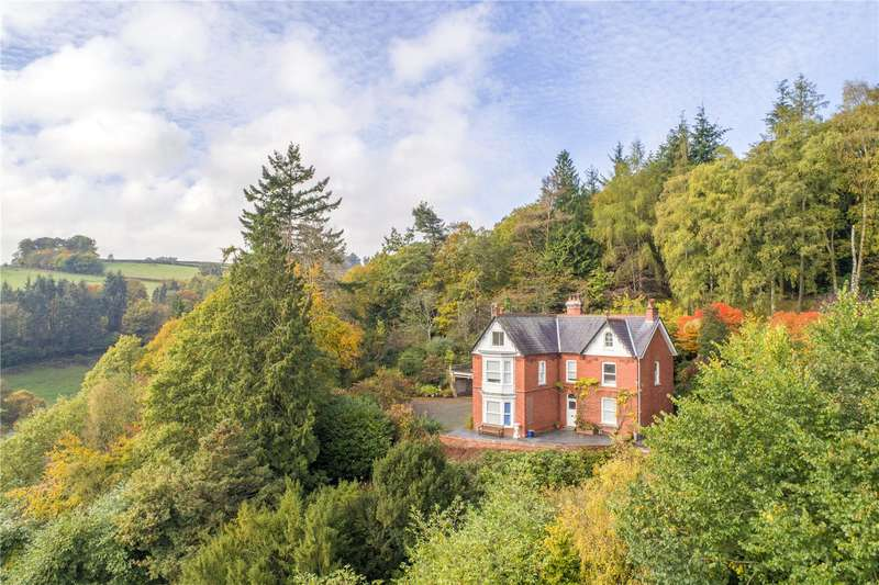 7 Bedrooms Detached House for sale in Van Road, Llanidloes, Powys, SY18 6HR