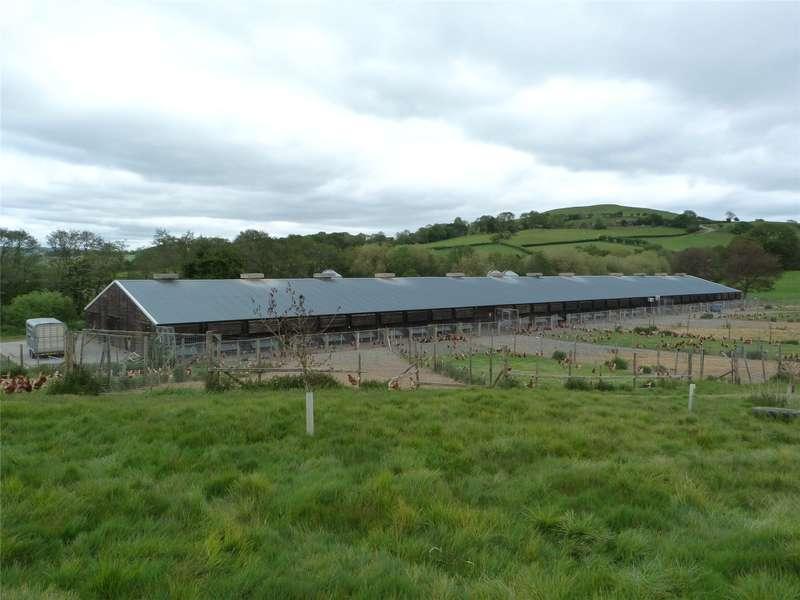 Farm Commercial for rent in Dolau, Llandrindod Wells, Powys, LD1 5UW