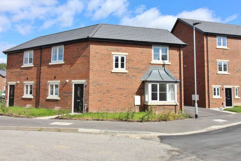 3 Bedrooms Semi Detached House for sale in Wells Lane, Wombwell, Barnsley, S73