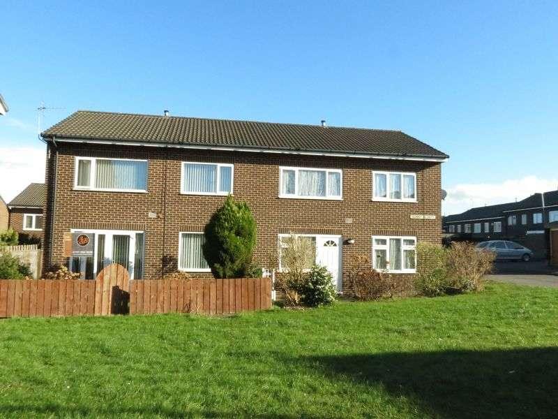 3 Bedrooms Semi Detached House for sale in Sunny Blunts, Peterlee