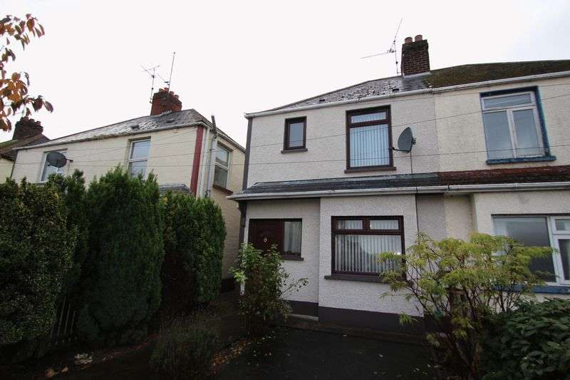 3 Bedrooms Semi Detached House for sale in Deer Park, Portadown