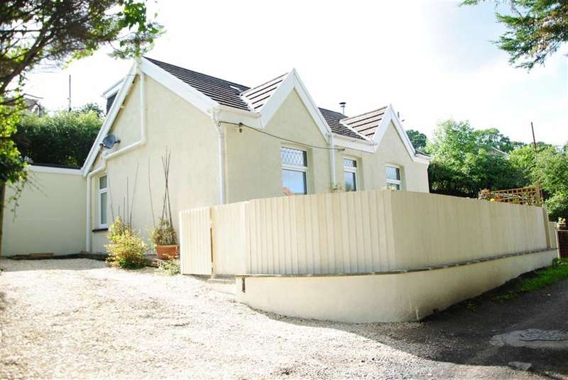 3 Bedrooms Property for sale in Fagwr Road, Craig-Cefn-Parc
