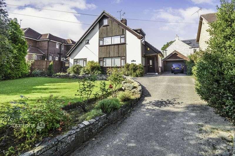 4 Bedrooms Detached House for sale in Appledore, Ashton Lane, Braithwell
