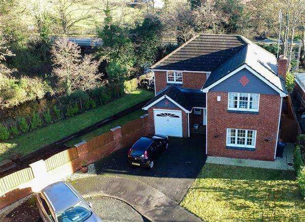 4 Bedrooms Detached House for sale in Riverside Court, Pontblyddyn