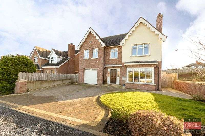 4 Bedrooms Detached House for sale in Site 1, The Oak, Chestnut Lodge, Drumbo, BT27 5FA