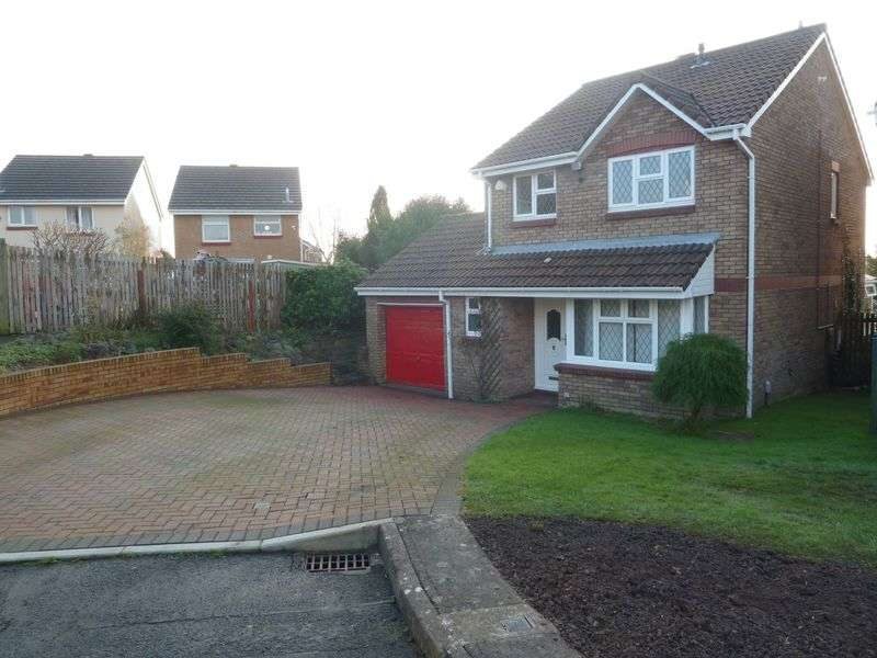 4 Bedrooms Detached House for sale in Enfield Drive, Barry