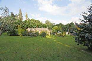 4 Bedrooms Bungalow for sale in The Street, Bury, Pulborough, West Sussex