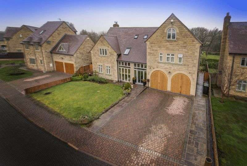 6 Bedrooms Detached House for sale in MILLRACE, ECCLESBOURNE REACH, DUFFIELD