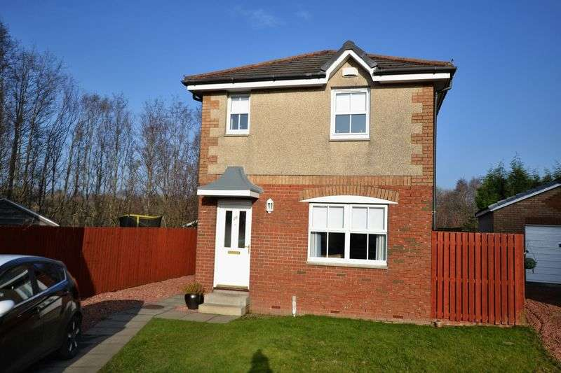 3 Bedrooms Detached House for sale in Pillans Court, Hamilton