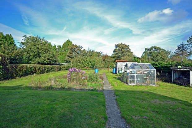 3 Bedrooms Detached Bungalow for sale in East Boldre