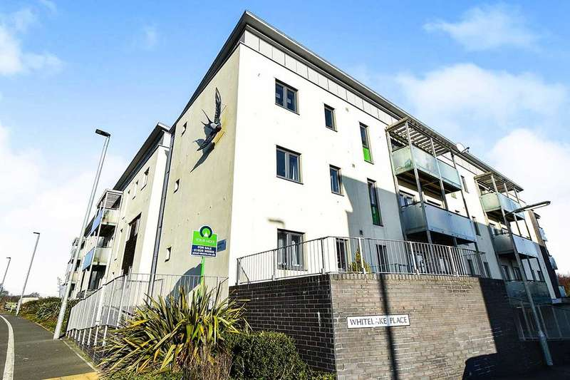 1 Bedroom Flat for sale in West Golds Way, Newton Abbot, TQ12