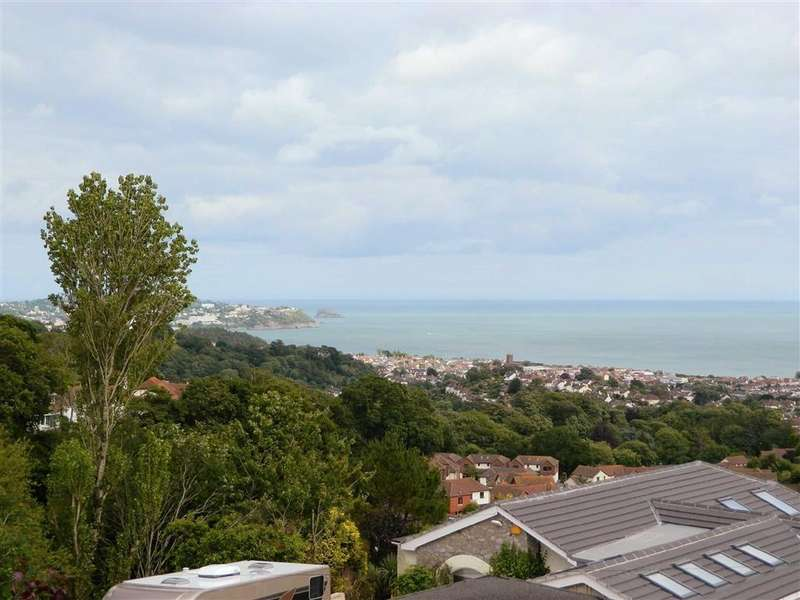 4 Bedrooms Detached House for sale in Marldon Road, Paignton, Devon, TQ3