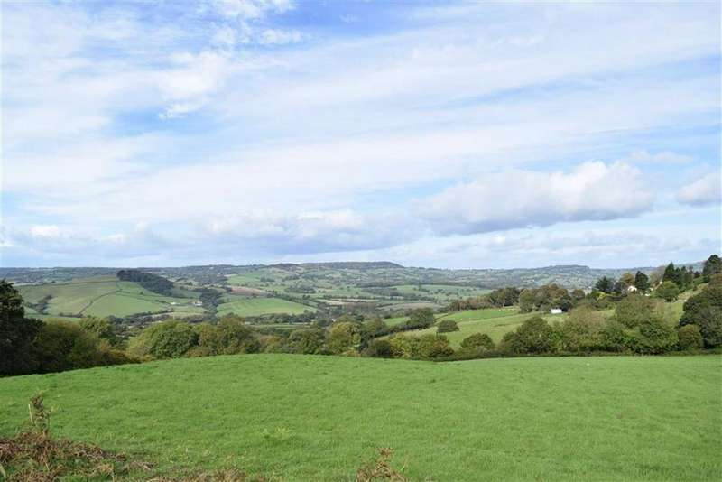 4 Bedrooms Detached House for sale in Ship Knapp, Morcombelake, Dorset, DT6