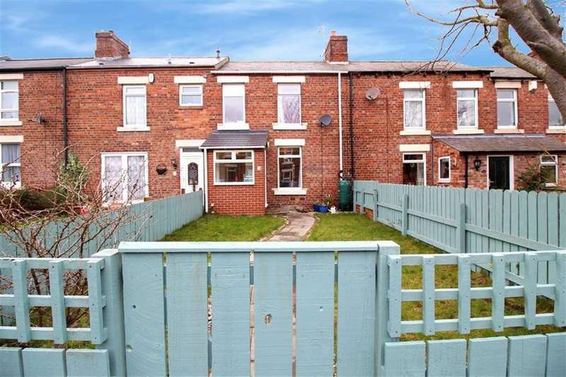 3 Bedrooms Terraced House for sale in Mary Agnes Street, Newcastle Upon Tyne, NE3
