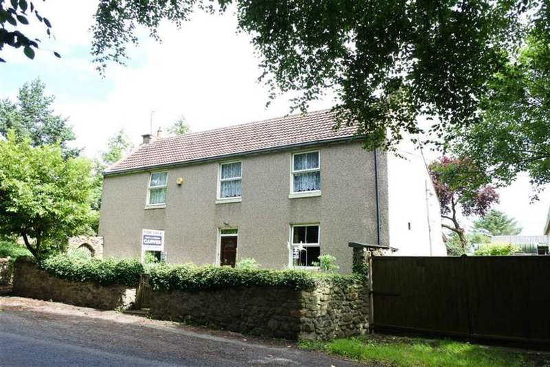 4 Bedrooms Detached House for sale in Shildon, County Durham