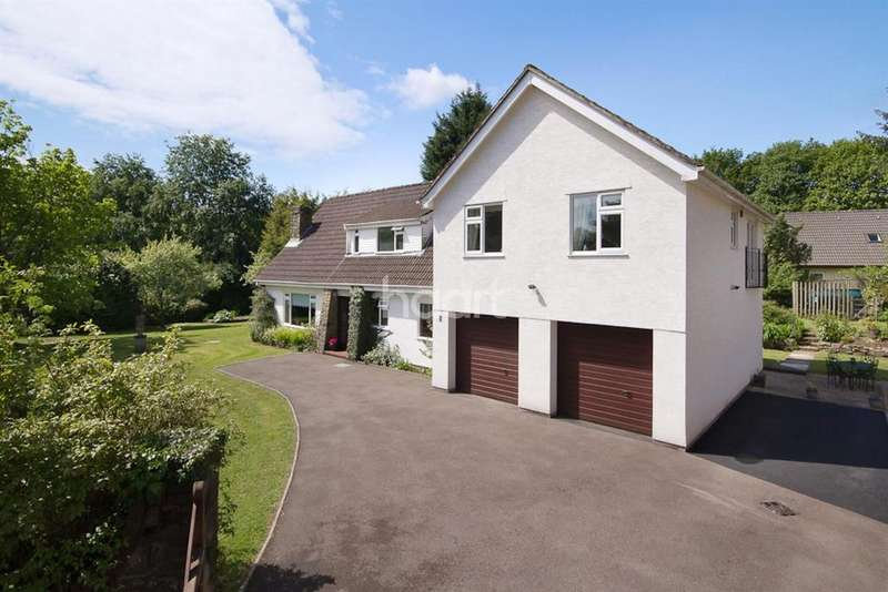 5 Bedrooms Detached House for sale in Woodlands, The Narth, Monmouth