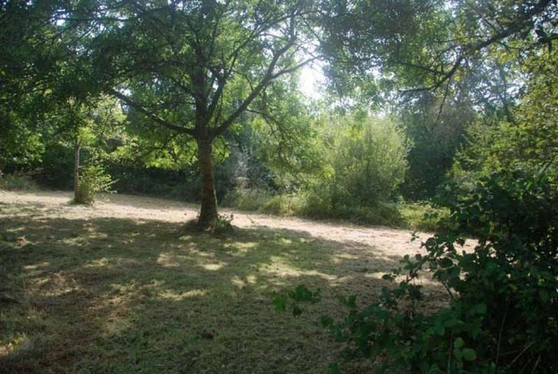 Land Commercial for sale in Woodland at Highampton, near Hatherleigh, Devon