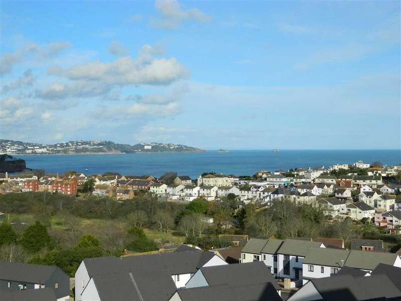 4 Bedrooms Detached House for sale in Palm Tree View, Orestone View, Paignton, Devon, TQ4