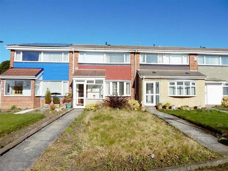 3 Bedrooms Terraced House for sale in Birch Grove, Battle Hill, Wallsend, NE28