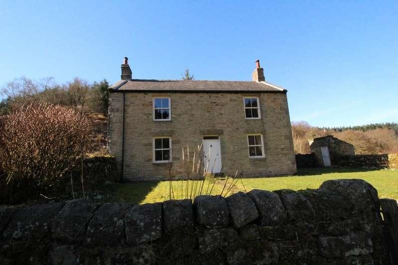 3 Bedrooms Detached House for sale in Tarset, Hexham
