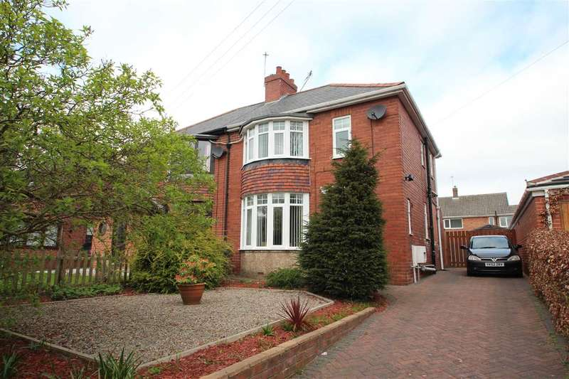 2 Bedrooms Semi Detached House for sale in Park Road South, Chester-le-Street