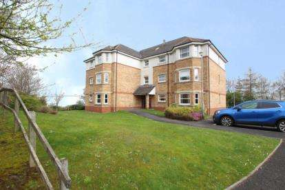 2 Bedrooms Flat for sale in Helmsdale Close, Blantyre