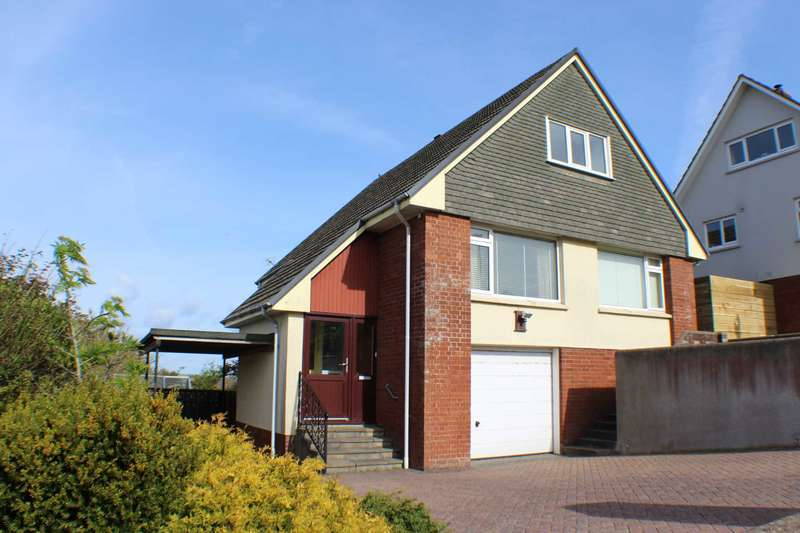 3 Bedrooms Detached House for sale in Lundy View, Northam