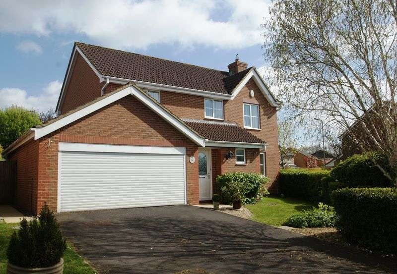 4 Bedrooms Detached House for sale in Celtic Drive, Anna Fields