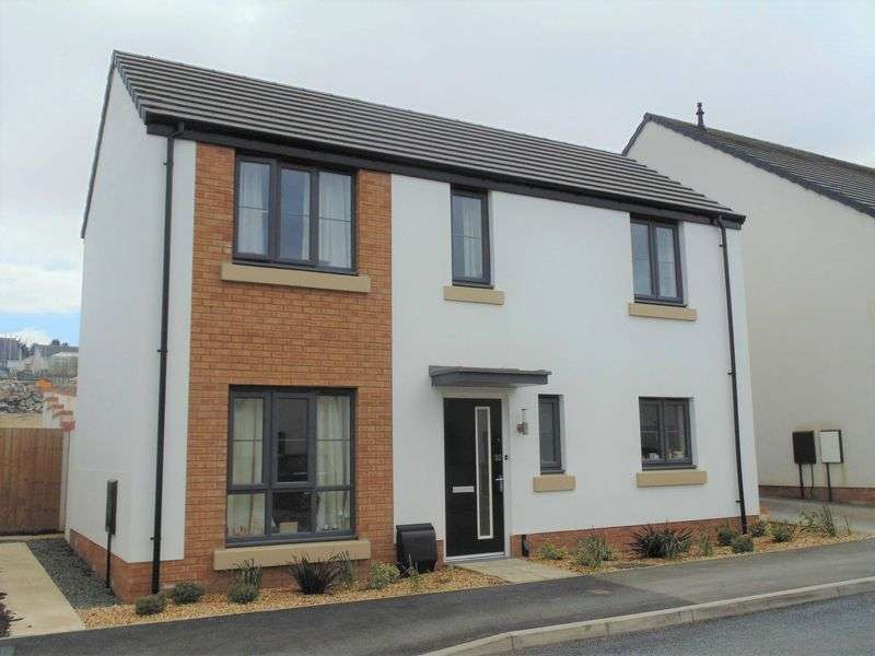 3 Bedrooms Detached House for sale in Okehampton