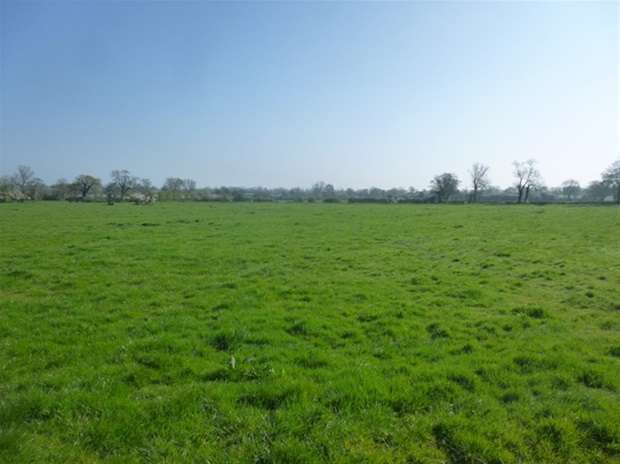 Land Commercial for sale in Double Gates Drove, Barton St. David, Somerton