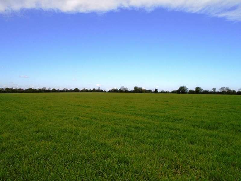 Land Commercial for sale in Ubbeston, Nr Halesworth
