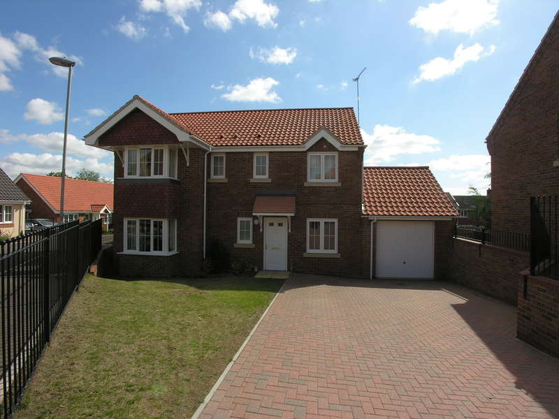 4 Bedrooms Detached House for sale in Grebe Drive, Chedgrave