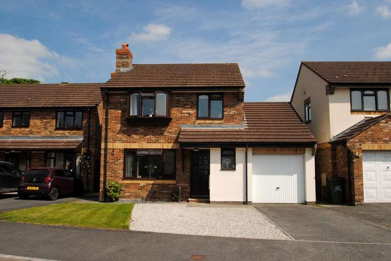 3 Bedrooms Detached House for sale in Hanson Park, Northam