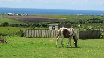 3 Bedrooms Barn Conversion Character Property for sale in Near Sennen, Penzance, Cornwall