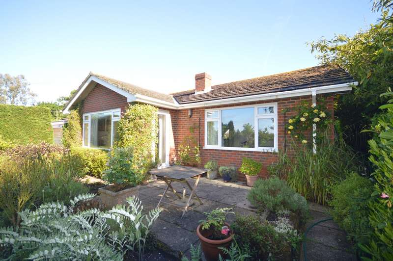 3 Bedrooms Detached Bungalow for sale in Old London Road, Coldwaltham, Pulborough, RH20