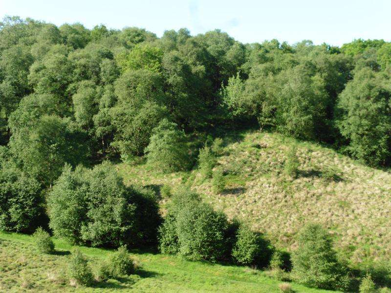 Land Commercial for sale in Cheddleton Heath Wood, Cheddleton, Leek, Staffordshire ST13
