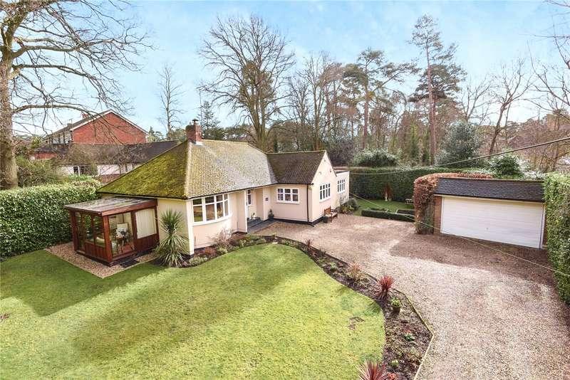 3 Bedrooms Detached Bungalow for sale in Nine Mile Ride, Nine Mile Ride, Wokingham, Berkshire, RG40