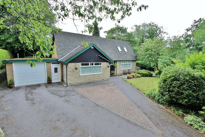 4 Bedrooms Detached House for sale in Endcliffe Vale Road, Endcliffe, Sheffield, S10 3EW
