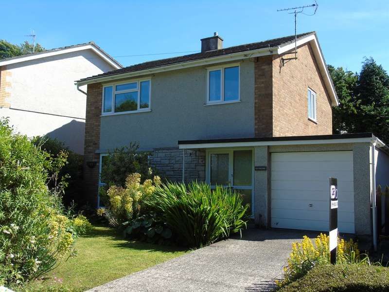 3 Bedrooms Detached House for sale in Mill Park, Cowbridge