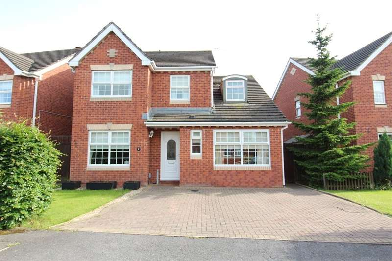 4 Bedrooms Detached House for sale in Cutter Close, Newport, NP19