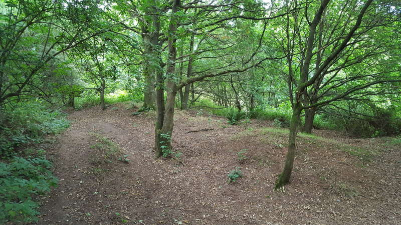 Land Commercial for sale in Woodland, Lawton Heath End